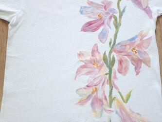 優しいピンクの百合の花 Tシャツ 手描きの画像
