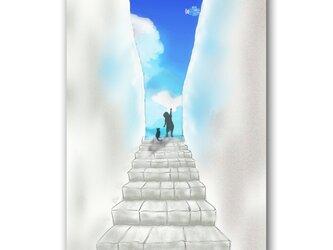 「胸の高鳴りと空の青」 青空 猫 ほっこり癒しのイラストポストカード2枚組No.1366の画像