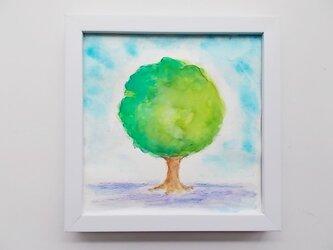 絵画 インテリア 額絵  水彩画 トピアリー2の画像