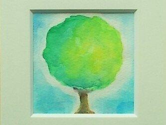 絵画 インテリア 額絵  水彩画 トピアリーの画像