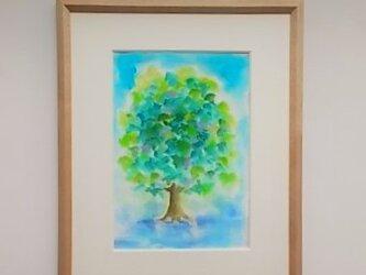 絵画 インテリア 額絵  水彩画 青と緑の世界 思い出の木の画像