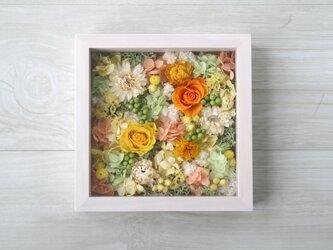 [誕生日プレゼント・結婚祝い・ご両親贈呈品] 送料無料 アクリル板付きフレーム アレンジ Vitamin colorの画像