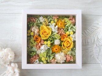 アクリル板付きフレーム アレンジ Vitamin colorの画像