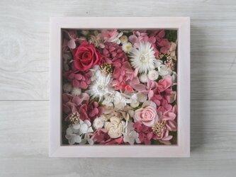 [誕生日プレゼント・結婚祝い・ご両親贈呈品] 送料無料 アクリル板付きフレーム アレンジ Pink raspberryの画像