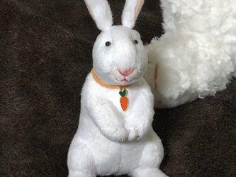 人参ウサギの画像