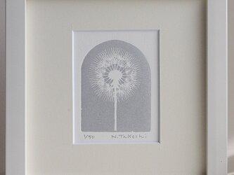 たんぽぽ・2021(シルバー)/ 銅版画 (額あり)の画像