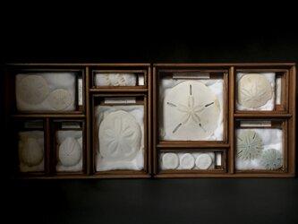白の箱。の画像