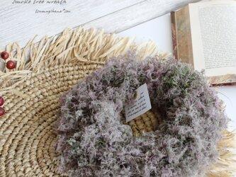 スモークツリー のシンプルなリース   ドライフラワーリース の画像