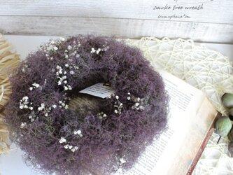 「プラネタリウム」wreath  スモークツリー とかすみ草のリース   ドライフラワーリース の画像