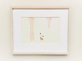 「ひなげし」イラスト原画 ※木製額縁入りの画像