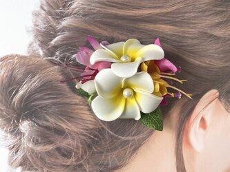 プルメリアとブーゲンビリアのヘアクリップ:B 髪飾り トロピカルフラワー 南国 フラ フラダンス の画像