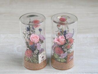 「7月生まれの方へ」  誕生月の天然石 7月の花 flower garden (S)の画像
