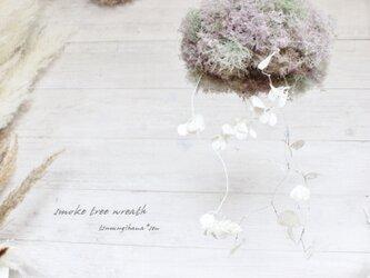 スモークツリー と ルナリア の フライングリース    ドライフラワーリースの画像