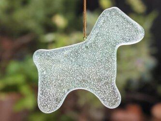【usuislabo】glass cookies - うまの画像
