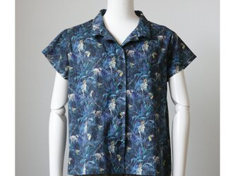 オープンカラーのシャツブラウス リバティ トゥーカン・ハイド (ML)の画像