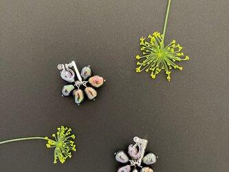Dill flower-----* ブラックカラーパール *------の画像