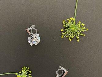 Dill flower -----* クリスタルガラス *------の画像
