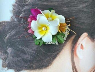 プルメリアとブーゲンビリアのヘアクリップ:C 髪飾り トロピカルフラワー 南国 フラ フラダンス の画像