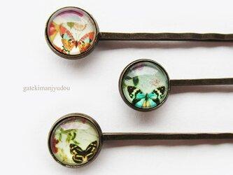 蝶のヘアピン3本セットの画像