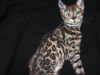 ベンガル猫のTシャツ 毛並みを感じての画像