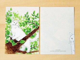 メモ紙 猫の画像