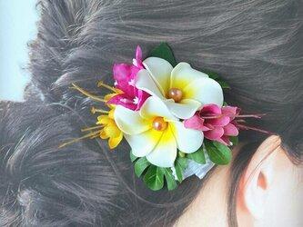 プリーツリボンとプルメリアのヘアクリップ:D 髪飾り トロピカルフラワー 南国 フラ フラダンス の画像