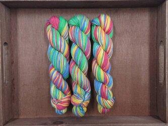 インダスからの贈り物【オリジナル段染め糸】(546) 1本の画像