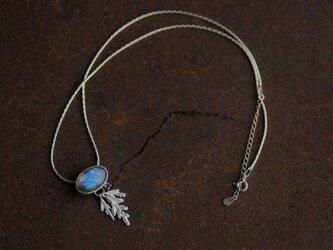 糸杉とラブラドライトのネックレスの画像