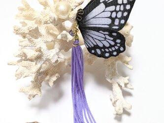 蝶のピアス(大)アサギマダラの画像