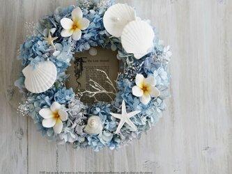 Summer Wreath ~Little Mermaid~ 26cm(プリザ)の画像