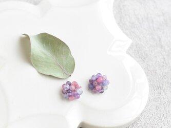 紫陽花/イヤリングの画像