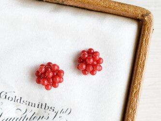 木苺 ベリー 赤珊瑚/ピアスの画像