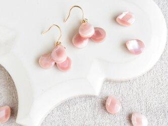 ピンクの花びら シェル/3粒 14kgfピアスの画像