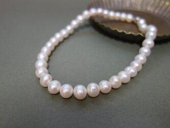 11mmUP 大珠パール ネックレス の画像