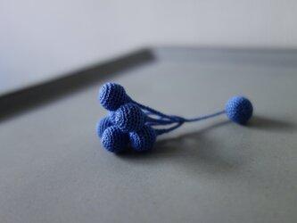 pähkinä sininenの画像