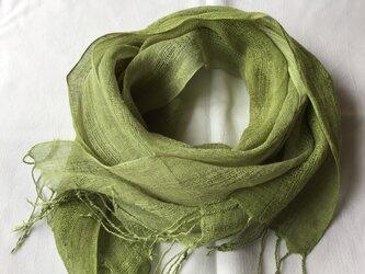 草木染め 麻ショール コブナグサ 緑色の画像