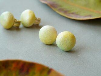 【陶器】まるsprayピアス/イヤリング グリーンレモンの画像