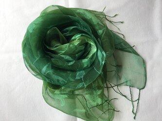 草木染め シルクストール ローズ模様 緑色の画像