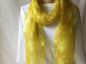 草木染め シルクストール ローズ模様 コブナグサ 黄色の画像