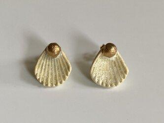 Shell 陶器のピアス or イヤリングの画像