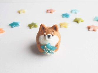 【受注製作】~七夕~ 流れ星を拾ったまゆ柴犬(赤柴・黒柴・白柴)  羊毛フェルトの画像