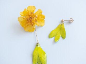 マリーゴールド&ガーベラ ピアス 生花のアクセサリーの画像