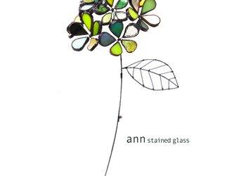 ステンドグラス 紫陽花D210630-Gの画像