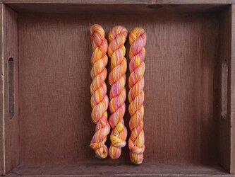 インダスからの贈り物【オリジナル段染め糸  細】(558) 1本の画像
