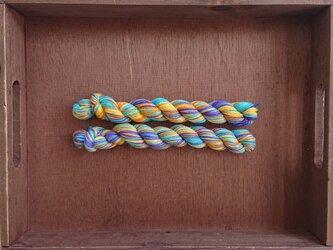 インダスからの贈り物【オリジナル段染め糸  細】(559) 1本の画像