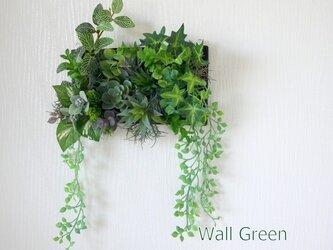光触媒加工 多肉植物 リモート背景 ウォールグリーン アーティフィシャルフラワーの画像