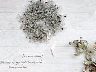 「吾 亦 紅」wreath  ワレモコウとシングルかすみ草のリース   ドライフラワーリース の画像