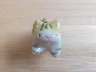 ちび猫=^人^=緑トラネコの画像