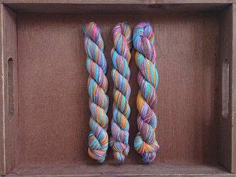 インダスからの贈り物【オリジナル段染め糸  細】(570) 1本の画像