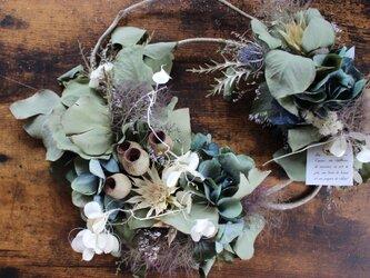 [jade] wreath  秋色アジサイとポポラスリーフのアシンメトリーリース   ドライフラワーリース の画像